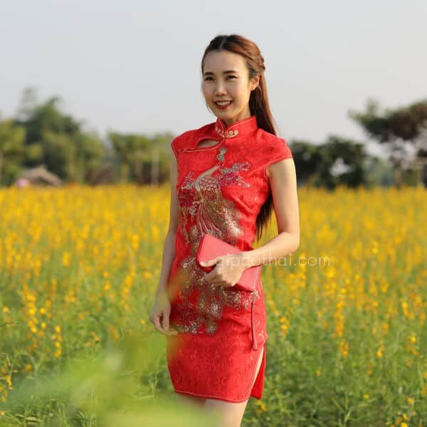 ชุดตรุษจีนผู้หญิง (ชุดกี่เพ้า) แบบสั้น สีแดง ลายปักนกยูง